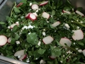 Watercress & radish salad